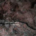 ROBERT LANDFERMANN Tiefgang album cover