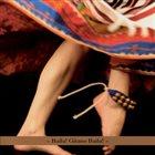 ROBERTO RODRIGUEZ Baila! Gitano Baila! album cover