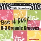 RON LEVY Best of RLWK :B-3 Organic Grooves album cover