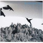 ROSS HAMMOND Flight album cover