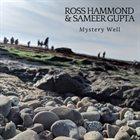 ROSS HAMMOND Ross Hammond & Sameer Gupta : Mystery Well album cover