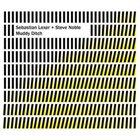 SEBASTIAN LEXER Sebastian Lexer + Steve Noble : Muddy Ditch album cover