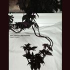 SIDSEL ENDRESEN Didymoi Dreams (with Stian Westerhus) album cover