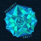 STEFAN GORANOV Gorafunk Electric : Frost / Fire album cover