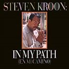 STEVEN KROON In My Path album cover
