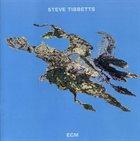 STEVE TIBBETTS Big Map Idea album cover