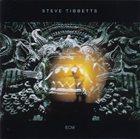 STEVE TIBBETTS The Fall Of Us All album cover