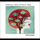 STEVEN BERNSTEIN Brass Bang! album cover