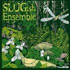 STEVEN LUGERNER Slugish Ensemble : An Eight Out of Nine album cover