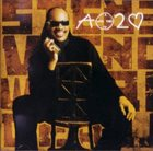 STEVIE WONDER A Time to Love album cover