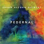 SUSAN ALCORN Susan Alcorn Quintet : Pedernal album cover