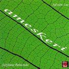 SYLVAIN LUC Sylvain Luc, Stéphane Belmondo : ameskeri album cover