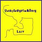 TELLEF ØGRIM Laiv album cover