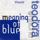 TEODORA ENACHE Teodora Enache & Jean Stoian : Meaning Of Blue album cover