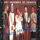 THE ART ENSEMBLE OF CHICAGO America - South Africa album cover