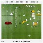 THE ART ENSEMBLE OF CHICAGO Urban Bushmen album cover