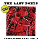 THE LAST POETS Understand What Dub Is (Prince Fatty dubs) album cover