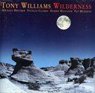 TONY WILLIAMS Wilderness album cover