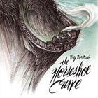TREY ANASTASIO The Horseshoe Curve album cover
