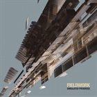 VIJAY IYER Fieldwork : Simulated Progress album cover