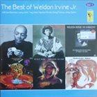 WELDON IRVINE The Best Of Weldon Irvine, Jr. album cover