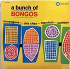 WILLIE RODRIGUEZ (PERCUSSION) A Bunch Of Bongos album cover