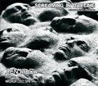 ZEN WIDOW Screaming In Daytime (featuring Wadada Leo Smith) album cover