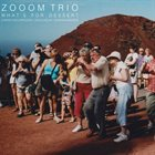 ZOOM TRIO What's for Dessert album cover