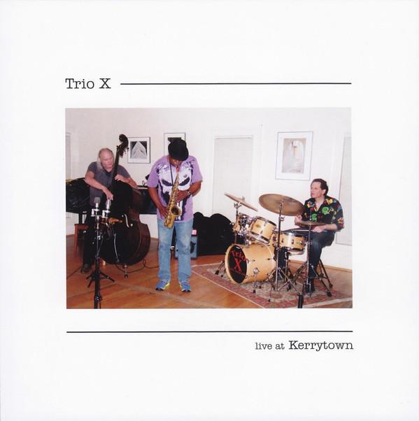 TRIO X (JOE MCPHEE - DOMINIC DUVAL - JAY ROSEN) - Live At Kerrytown cover