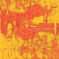 TYSHAWN SOREY - Verisimilitude cover