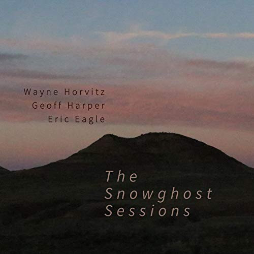 WAYNE HORVITZ - The Snowghost Sessions cover